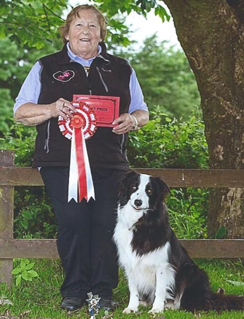 Advanced Dog Training - Competition winner