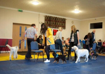 York City Dog Training Club - Musical chairs at the Christmas party