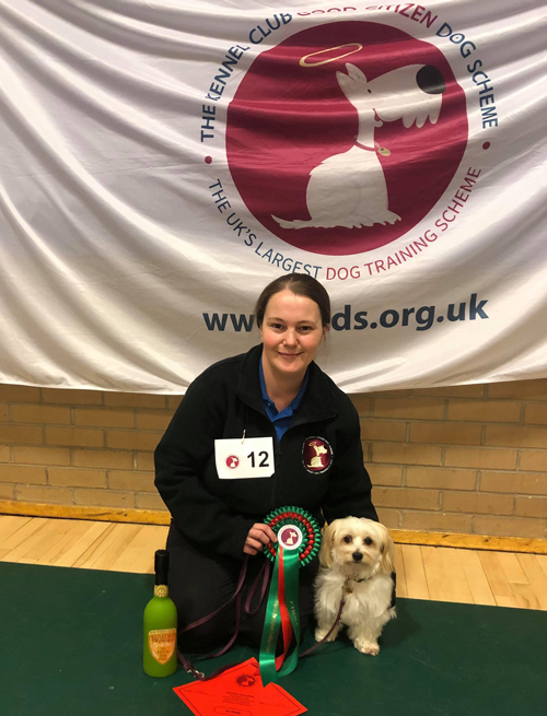 Qualifying for Crufts Special Pre- Beginners